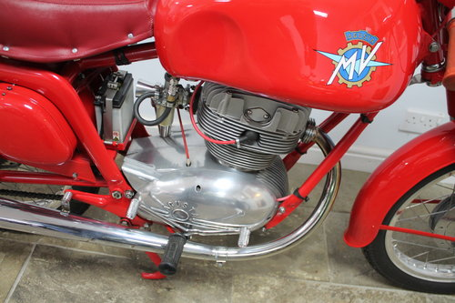 "1957 MV Agusta 175 CS Modello Sport Rare ""Big Head""  SOLD (picture 3 of 6)"