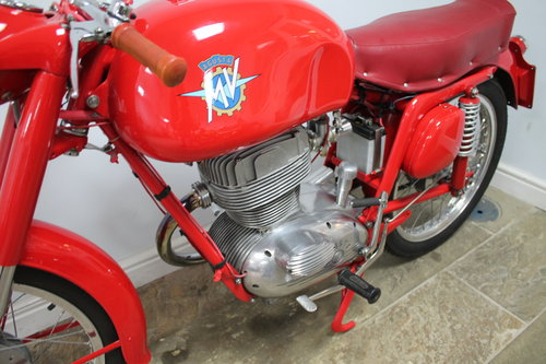 "1957 MV Agusta 175 CS Modello Sport Rare ""Big Head""  SOLD (picture 5 of 6)"