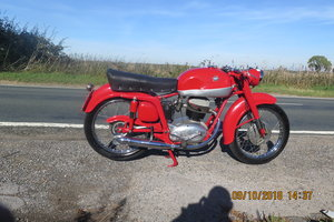 mv agusta 1956 For Sale