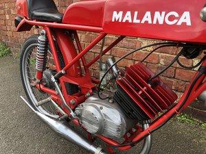 Malanca Testarossa Classic
