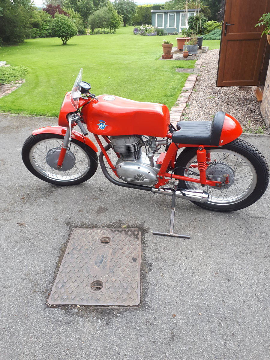 MV AGUSTA CS 175 1956 For Sale (picture 2 of 5)