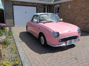1992 Pink Figaro (Lilly) For Sale