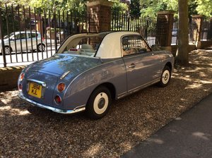 Immaculate Figaro Lapis Grey