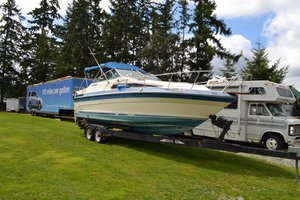 1997 Searay Sunrunner W2004 Trailer - Lot 681