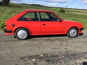 1980 Kadett D, 3 door 1300cc For Sale