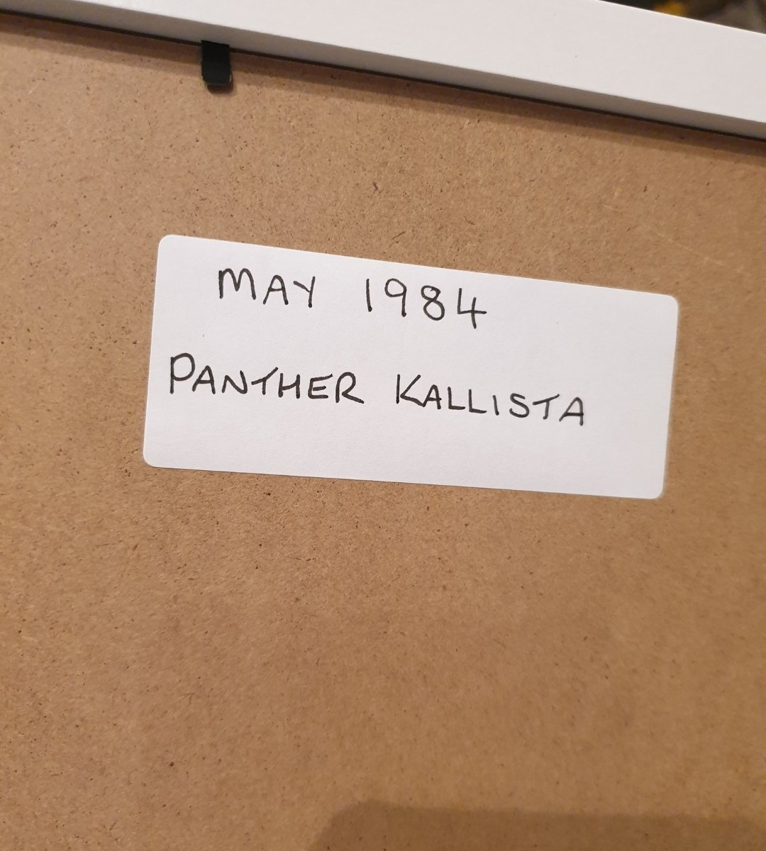 1984 Original Panther Kallista Advert For Sale (picture 2 of 2)