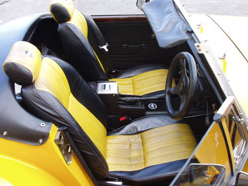 1979 Panther Lima II open 2-seater For Sale (picture 5 of 6)