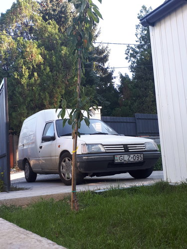 1996 Very hard to find 205 box truck For Sale (picture 1 of 5)