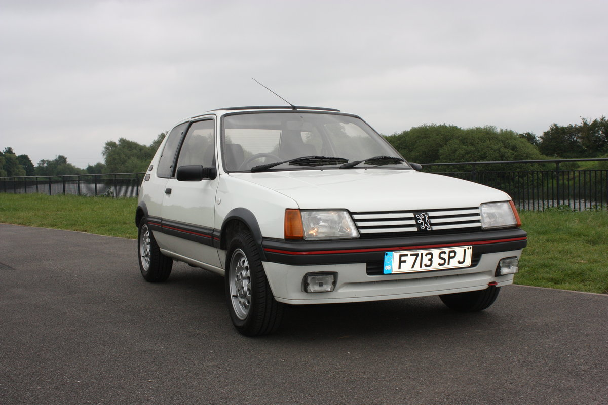 1989 Peugeot 205 GTI 1.6 For Sale (picture 1 of 6)