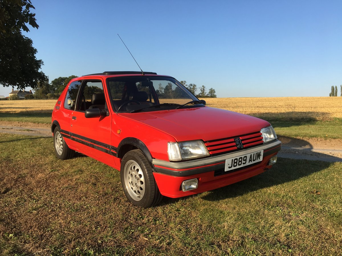 Peugeot 205 GTi 1.6 1991 For Sale (picture 1 of 6)
