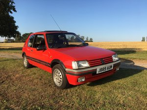 Peugeot 205 GTi 1.6 1991 For Sale