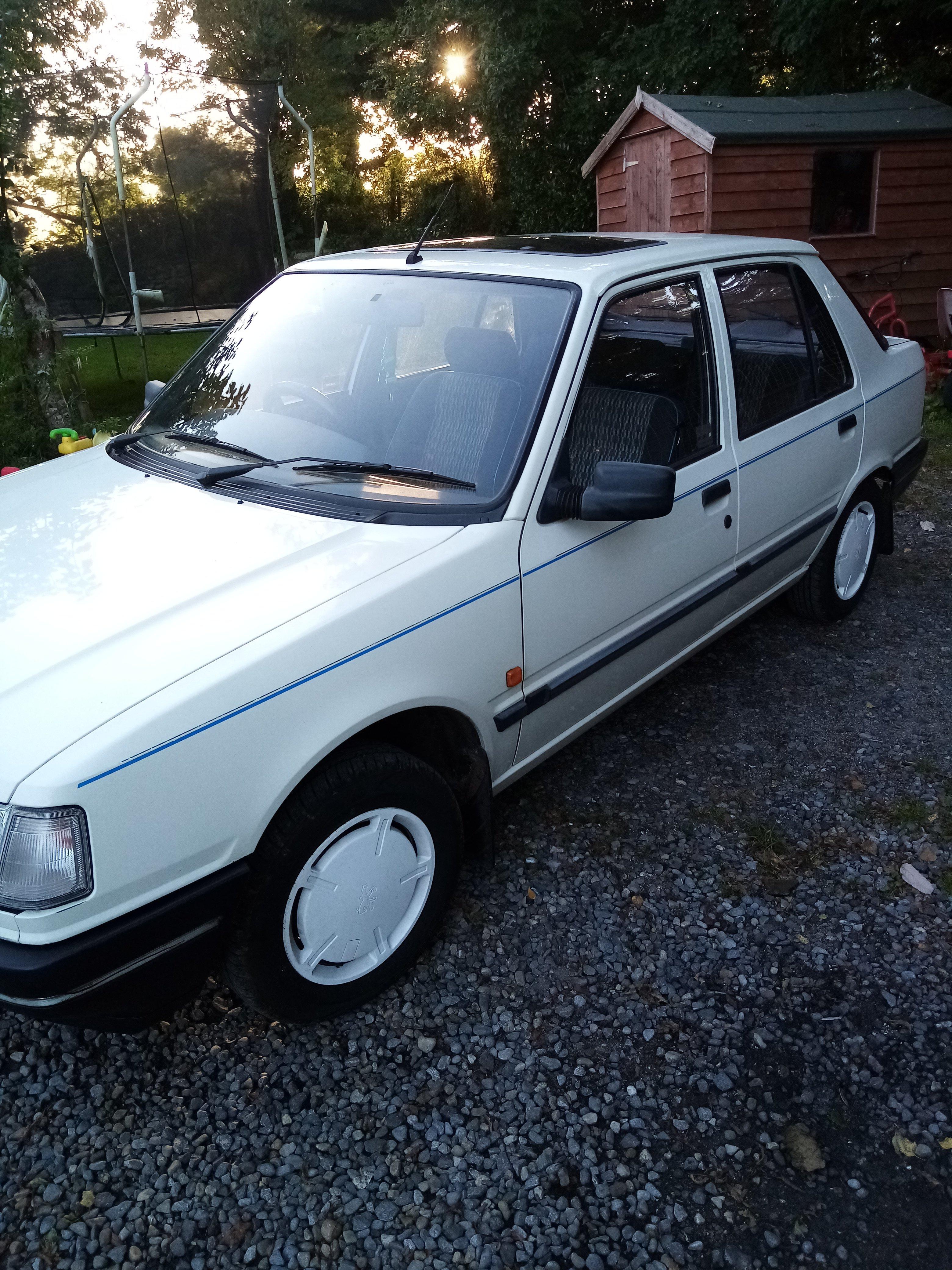Peugeot 309. Excellent car.