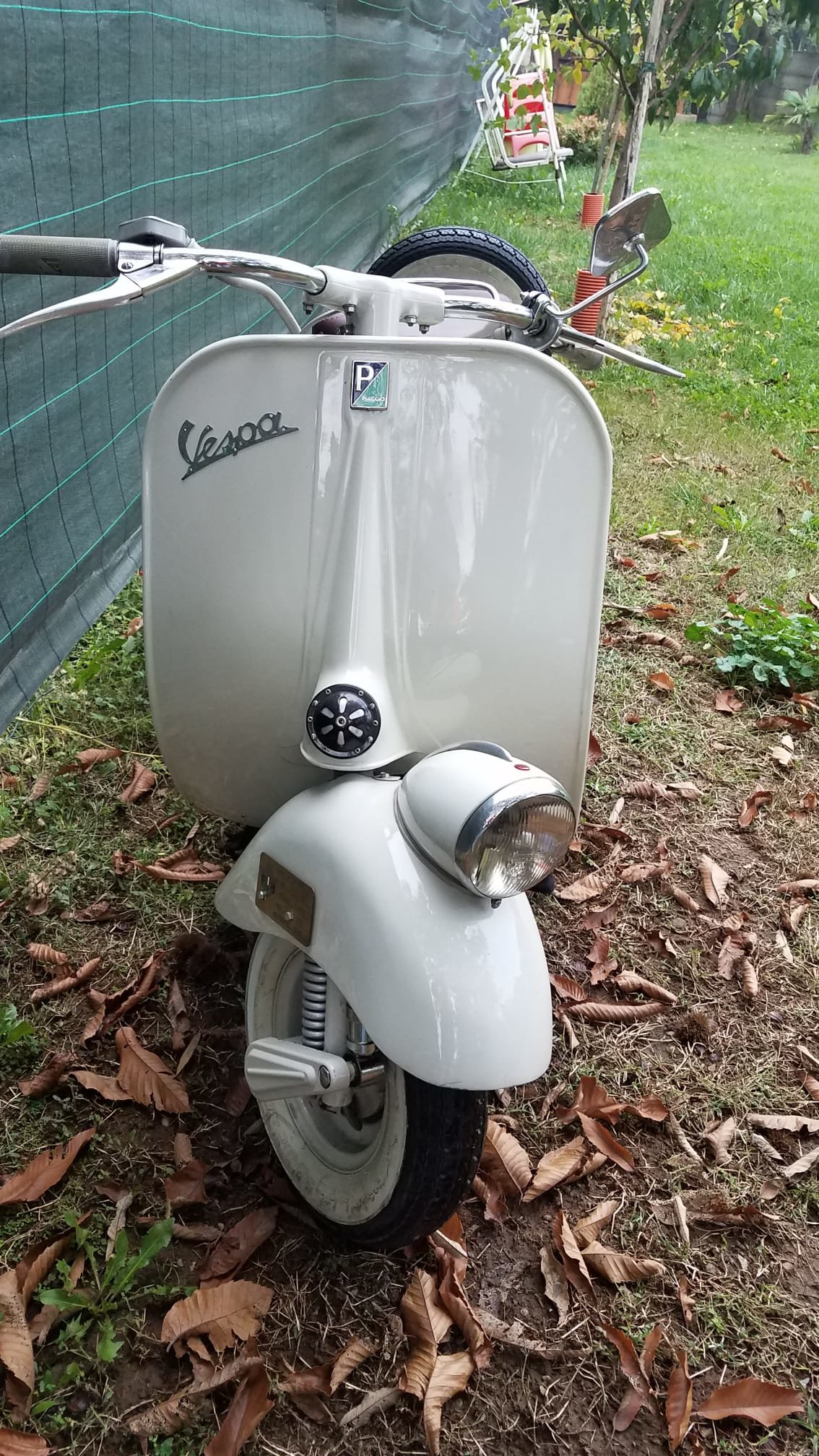 Vespa 125 year 1956 For Sale (picture 5 of 6)