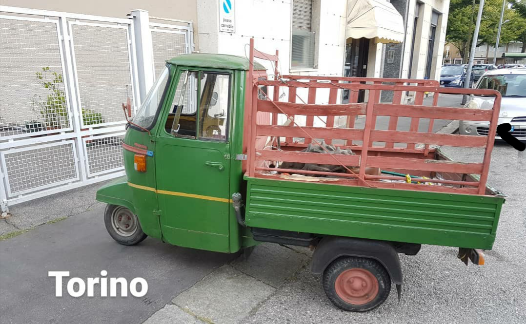 1983 Piaggio Vespacar Ape P 501  For Sale (picture 4 of 6)