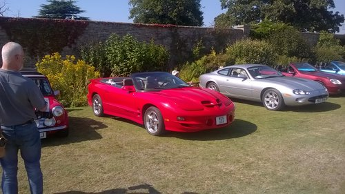 2001 Awesome Rare WS6 Trans Am Firebird Convertible For Sale (picture 2 of 6)
