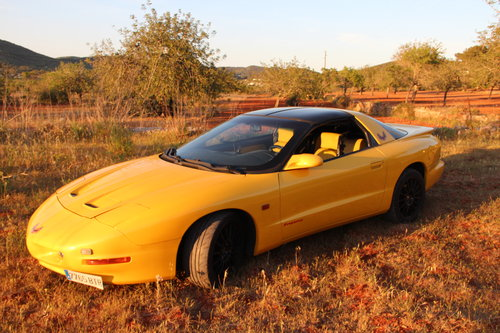 1993 Special Edition Showcar For Sale (picture 4 of 5)