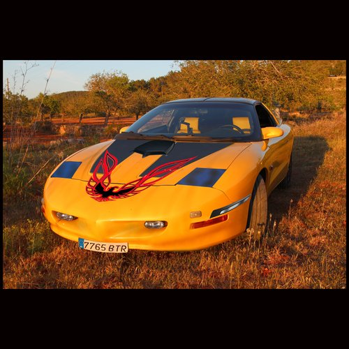 1993 Special Edition Showcar For Sale (picture 5 of 5)