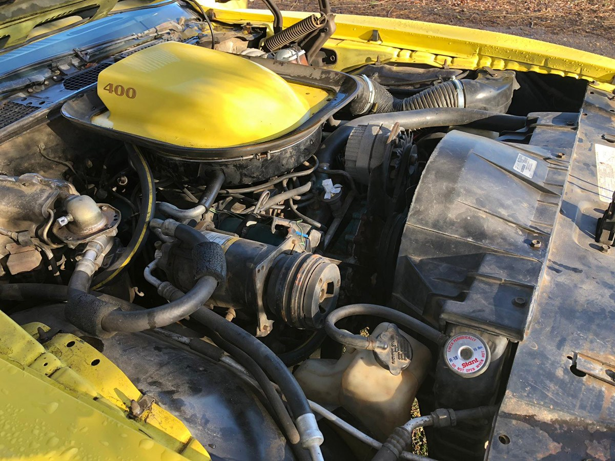1976 Pontiac Trans AM: 16 Feb 2019 For Sale by Auction (picture 3 of 6)