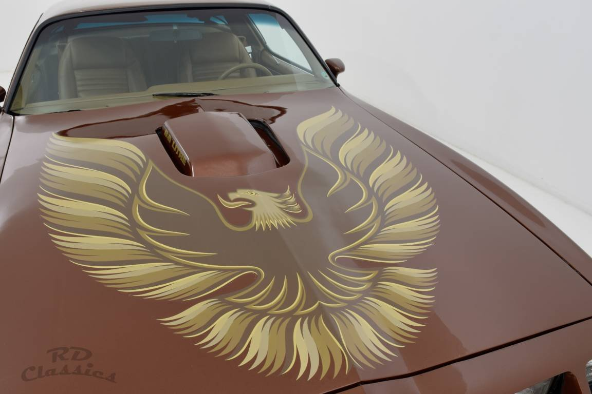 1979 Pontiac Trans Am 2D Coupe For Sale (picture 1 of 6)