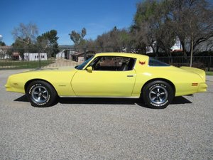 1978 Pontiac Firebird For Sale