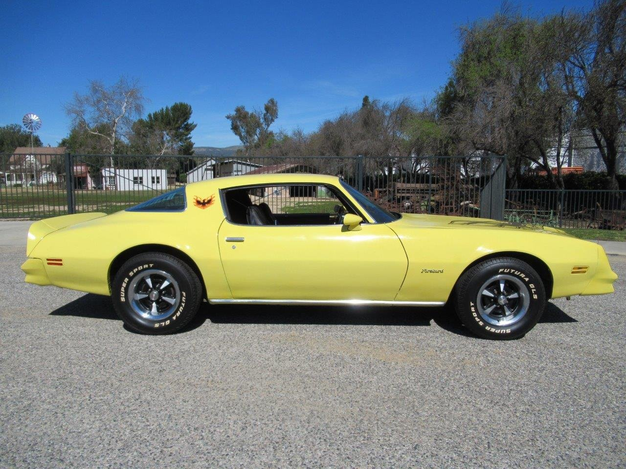 1978 Pontiac Firebird For Sale (picture 2 of 6)
