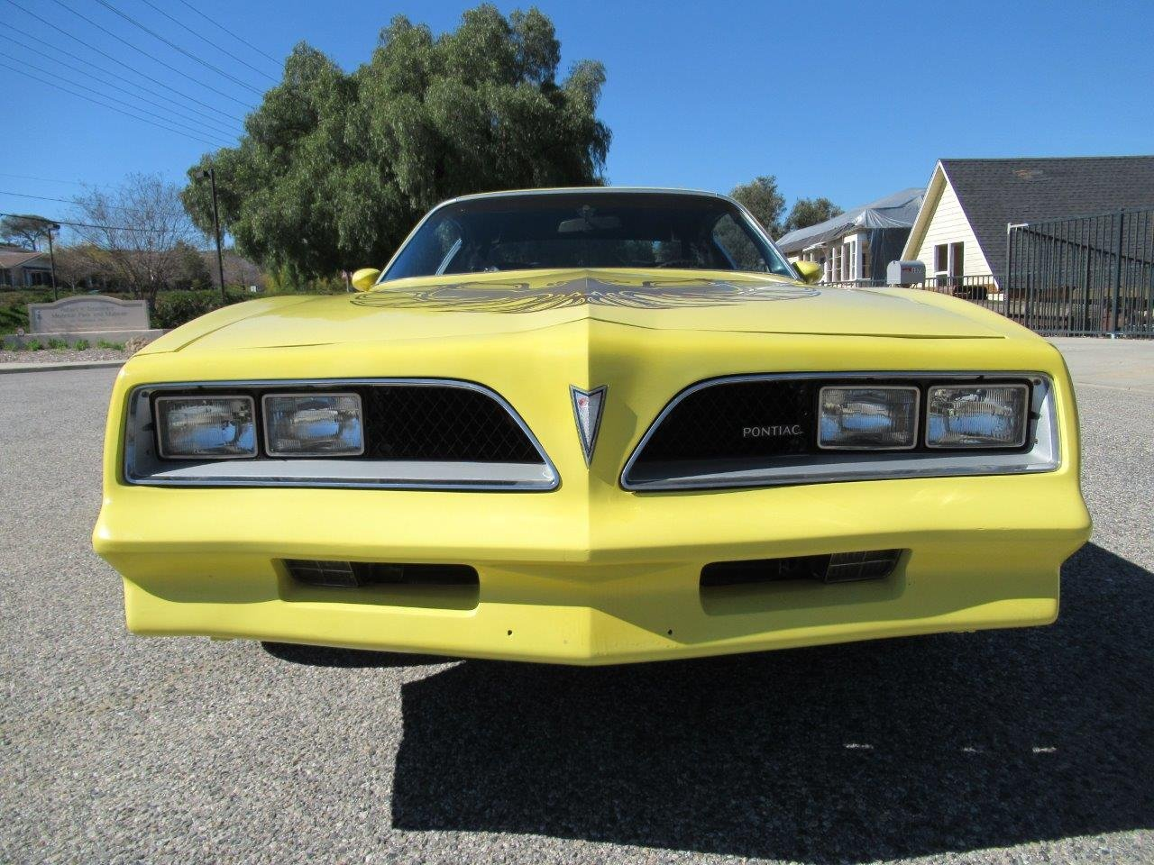 1978 Pontiac Firebird For Sale (picture 3 of 6)