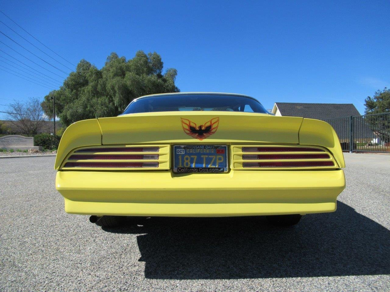 1978 Pontiac Firebird For Sale (picture 4 of 6)