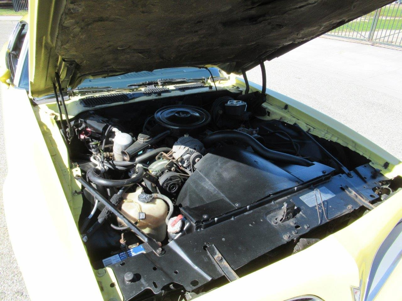 1978 Pontiac Firebird For Sale (picture 6 of 6)