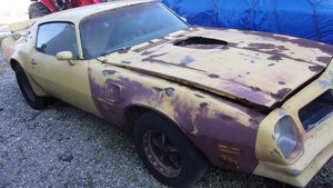 1976 Pontiac Trans AM 455, 4sp car For Sale