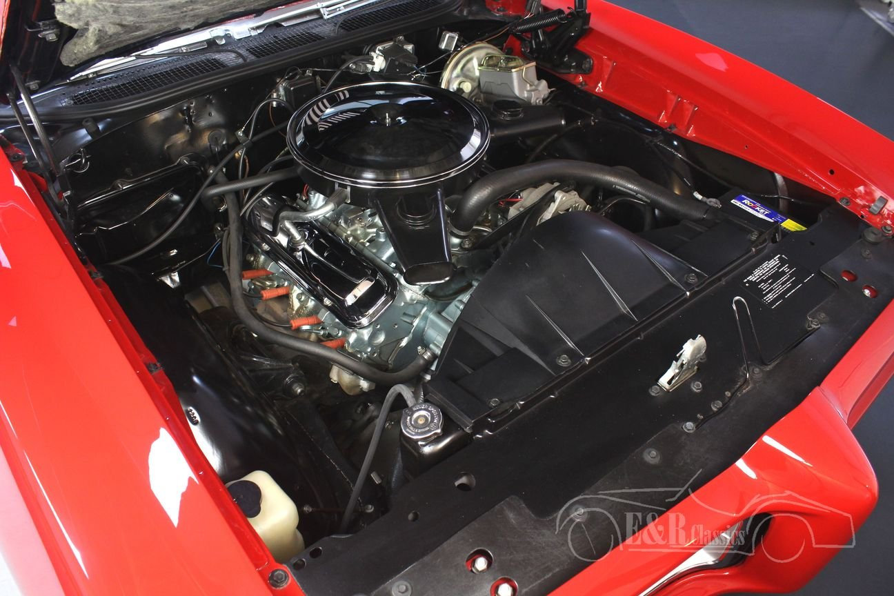 Pontiac GTO Convertible 1969 Ultimate Muscle Car For Sale (picture 4 of 6)