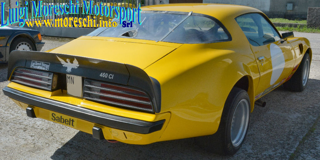 1975 Pontiac Trans-Am Firebrid Gr 2 For Sale (picture 4 of 6)