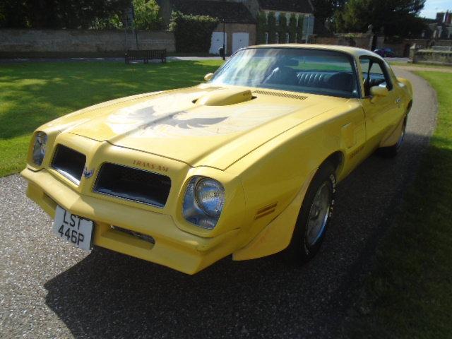1976 Pontiac Firebird TRANS-AM 400ci (6.6L) Auto. For Sale (picture 2 of 6)