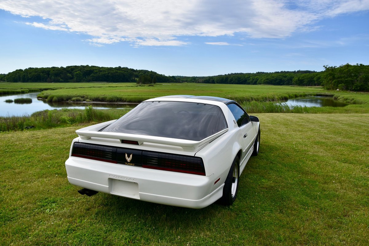 1989 Pontiac Firebird Trans Am 20th Anniversary For Sale (picture 3 of 6)