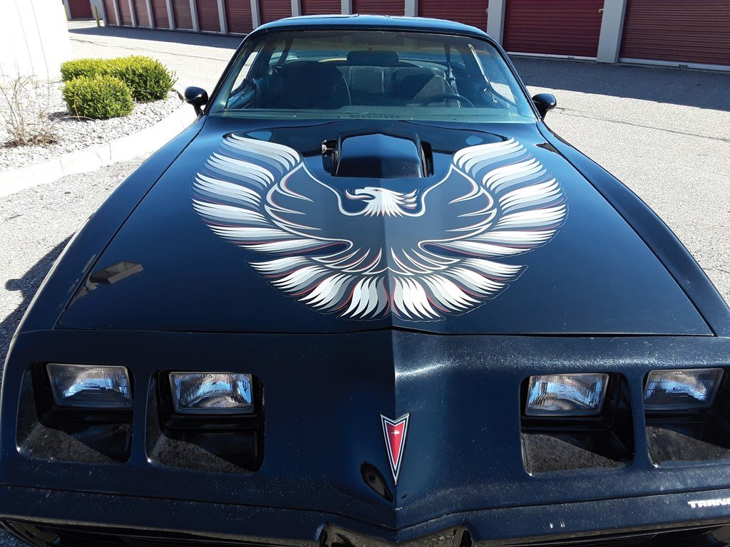 1979 Pontiac Firebird Trans Am  For Sale by Auction (picture 4 of 6)