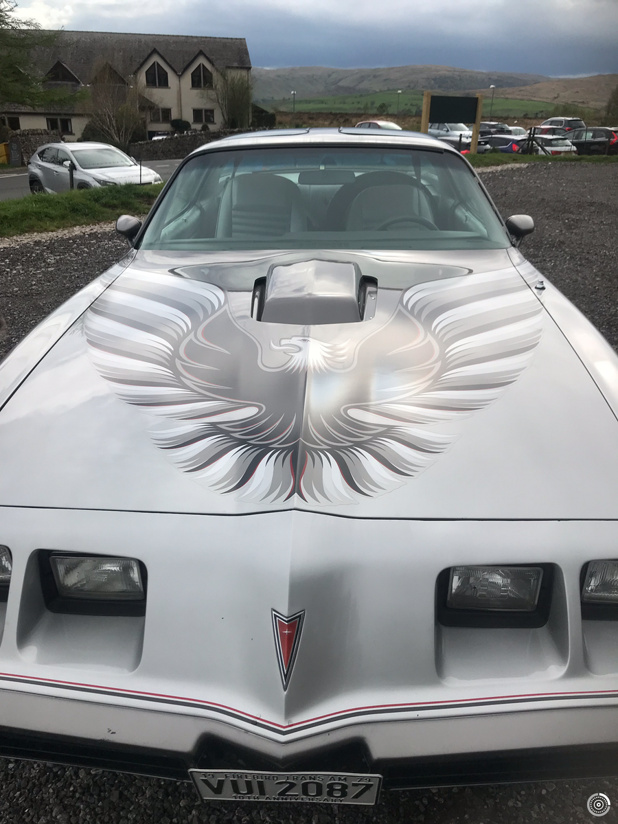 1979 Pontiac Trans Am Firebird Anniversary Edition  For Sale (picture 4 of 5)