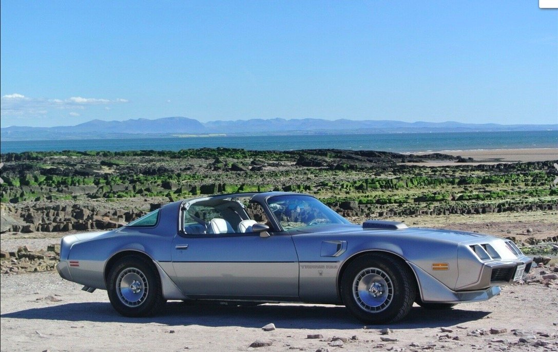 1979 Pontiac Trans Am Firebird Anniversary Edition  For Sale (picture 1 of 5)