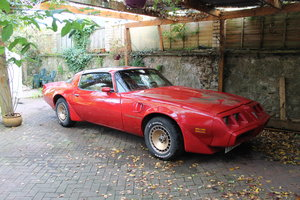 1981 pontiac firebird transam 4.9 turbo