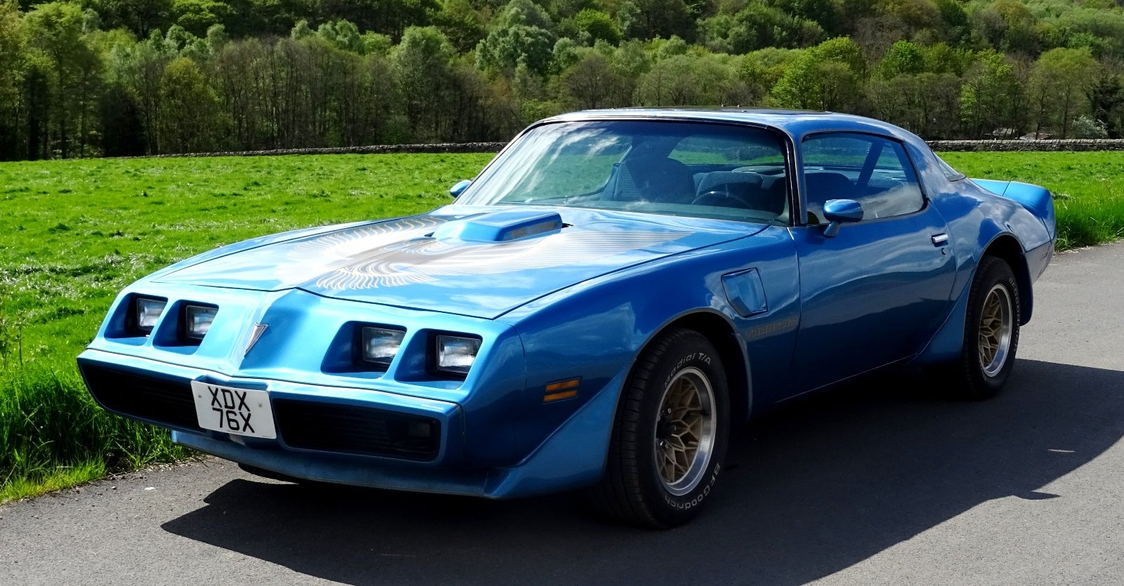 1980 PONTIAC FIREBIRD TRANS AM 6.6 LITRE V8 AMERICAN MUSCLE CAR For Sale (picture 2 of 6)