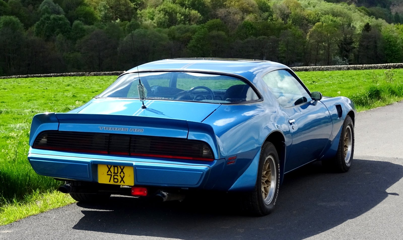 1980 PONTIAC FIREBIRD TRANS AM 6.6 LITRE V8 AMERICAN MUSCLE CAR For Sale (picture 5 of 6)