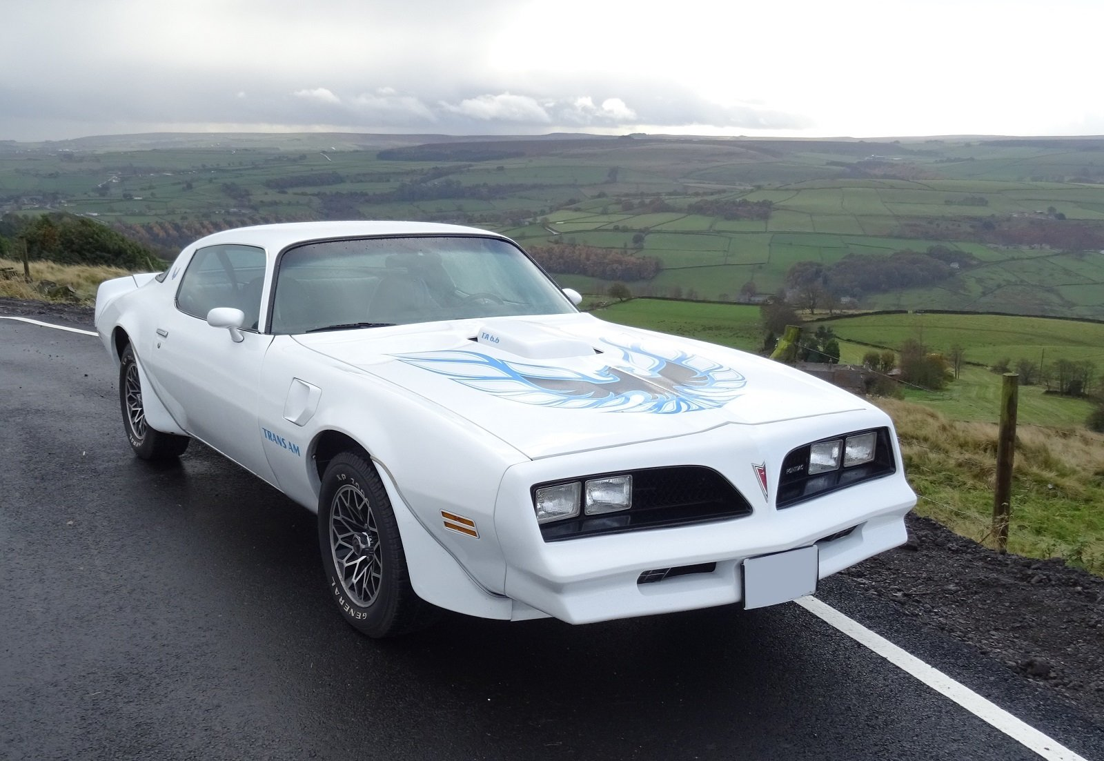 1978 STUNNING FIREBIRD TRANS AM 6.6 V8 POWERFUL ENGINE MUSCLE CAR For Sale (picture 1 of 6)