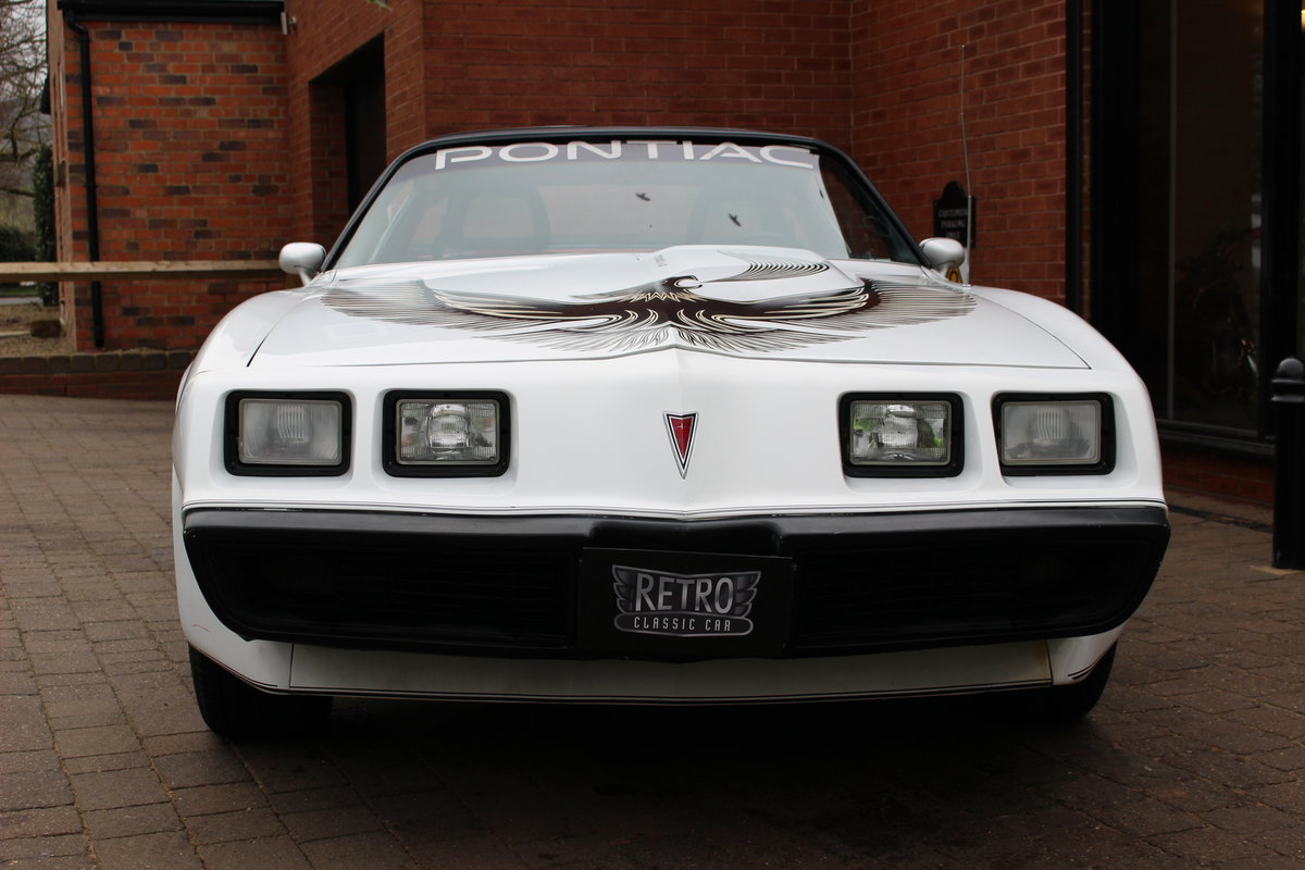 1981 Pontiac Turbo Trans-Am NASCAR Pace Car   Rare For Sale (picture 2 of 10)