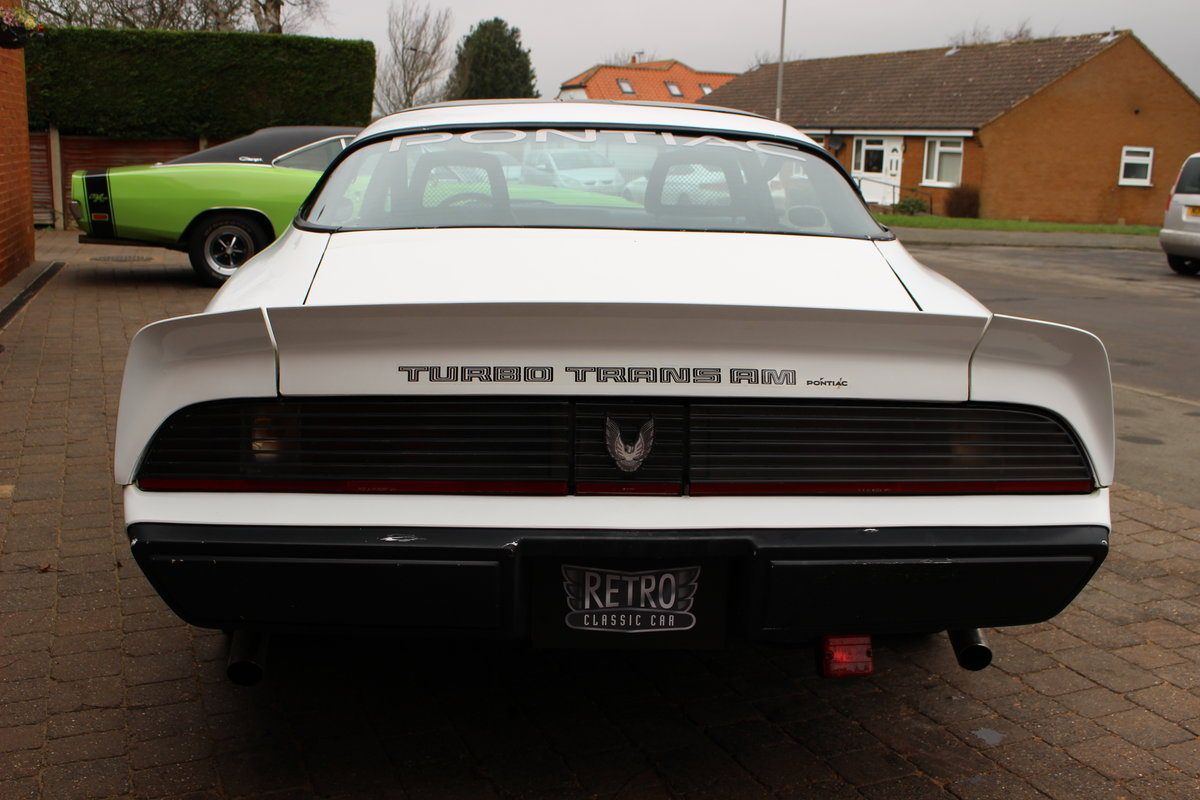 1981 Pontiac Turbo Trans-Am NASCAR Pace Car   Rare For Sale (picture 8 of 10)