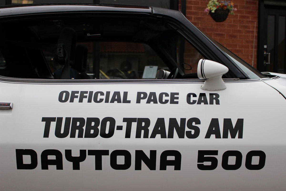1981 Pontiac Turbo Trans-Am NASCAR Pace Car   Rare For Sale (picture 9 of 10)
