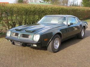 1975 Pontiac Firebird Formula 400 For Sale