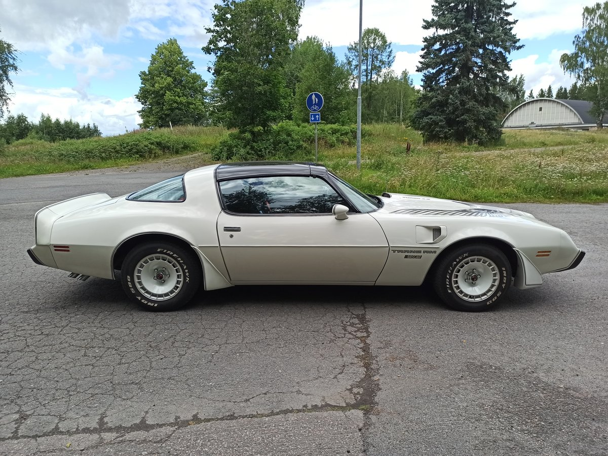 1981 Pontiac Trans Am Turbo Daytona Pace Car Edition For Sale (picture 2 of 6)
