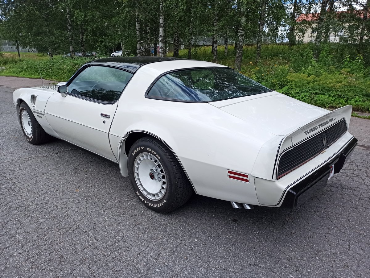 1981 Pontiac Trans Am Turbo Daytona Pace Car Edition For Sale (picture 3 of 6)