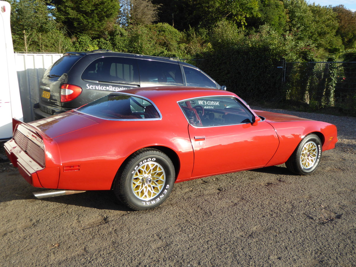 1979 Pontiac firebird 6.6 litre For Sale (picture 2 of 6)