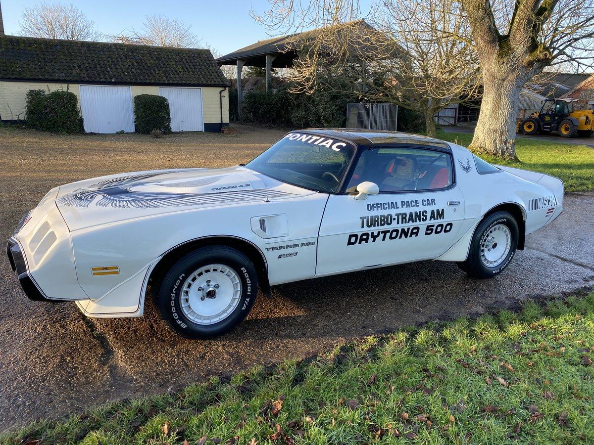 1981 Pontiac firebird trans am Daytona 500 pace car For Sale (picture 2 of 12)