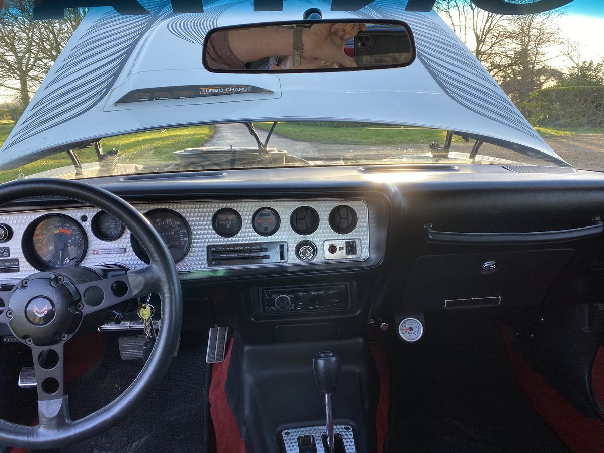 1981 Pontiac firebird trans am Daytona 500 pace car For Sale (picture 8 of 12)