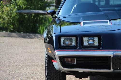 1981 Pontiac Firebird 5.0 V8 Formula For Sale (picture 3 of 6)